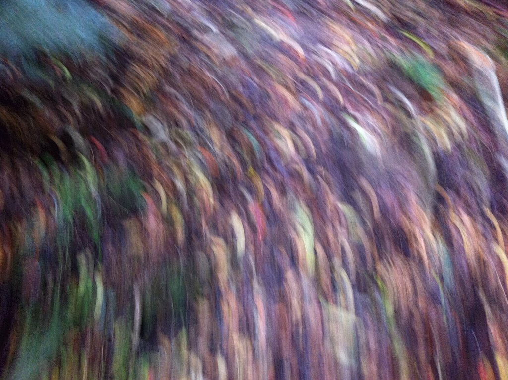Visual movement